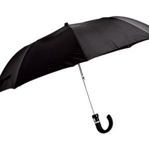 Auto-Open 2-Fold Umbrella with Sleeve - PDC/G/SV4-67BBP - Image 2