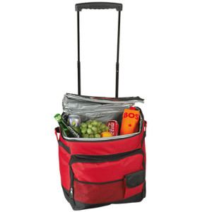 Trolley Cooler with Carry Handles - PDC/G/YFF-G7V4A - Image 1