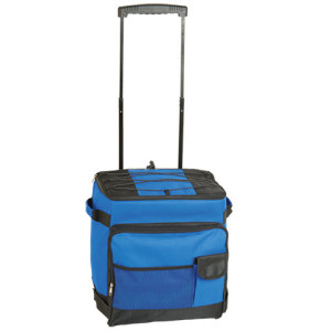 Trolley Cooler with Carry Handles - PDC/G/YFF-G7V4A - Image 2
