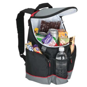 16-Can Backpack Cooler - 600D/PEVA Lining - PDC/G/JHC-FR584 - Image 1
